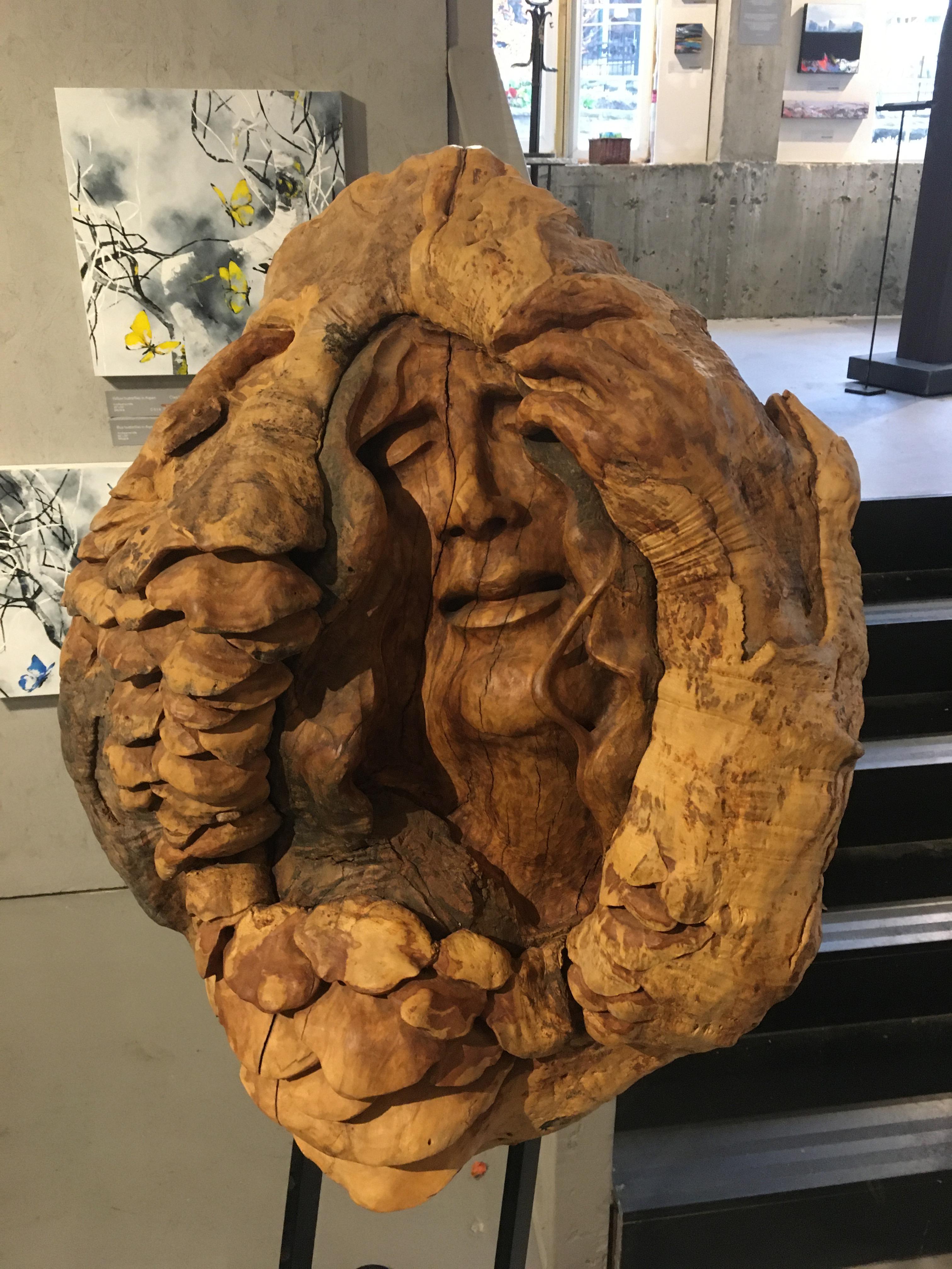 Lajeunesse - Loupe d'érable - 4000$